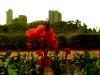 Hanging Gardens Mumbai