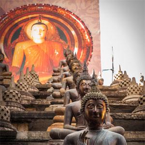 error fare nach sri lanka artikelbild im tempel